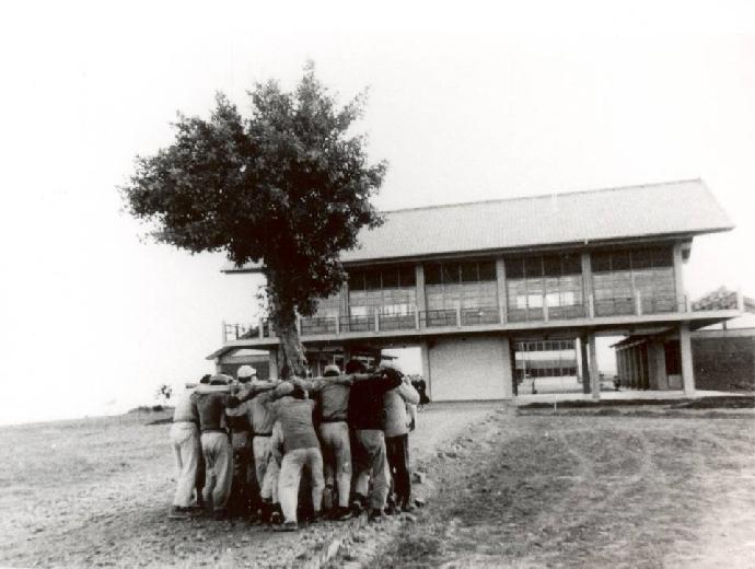 「東海大學早期校園」獲登錄文化景觀 國內校園首例